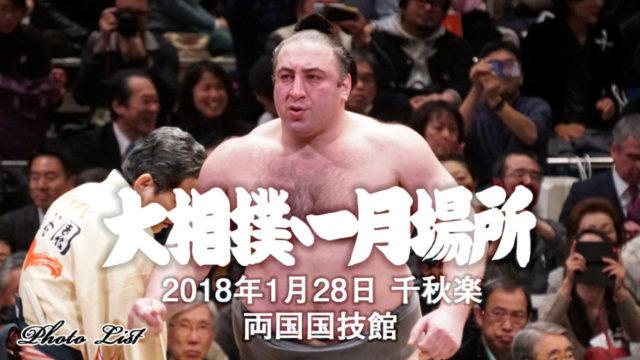 【2018年初場所】大相撲フォトギャラリー・栃ノ心初優勝【千秋楽を観戦】