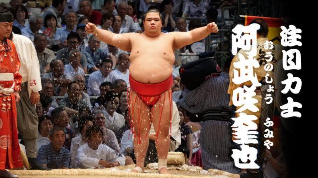 注目力士「阿武咲(おうのしょう)」。2017年福岡場所で新三役、2018年中に大関昇進。